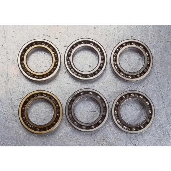 NJ2316EM Cylindrical Roller Bearing 80x170x58mm #2 image